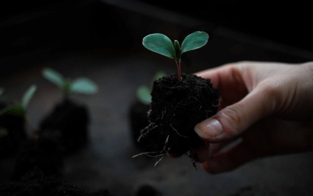 soilblockers och omskolning